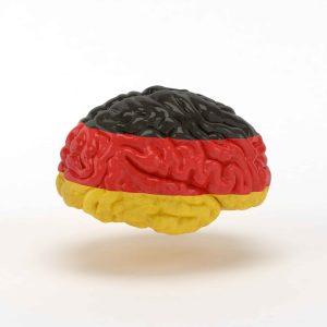 Cerebro con la bandera alemana