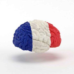 Cerebro con bandera francesa